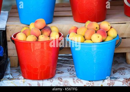 Fresh organic apricots in buckets on market - Stock Photo