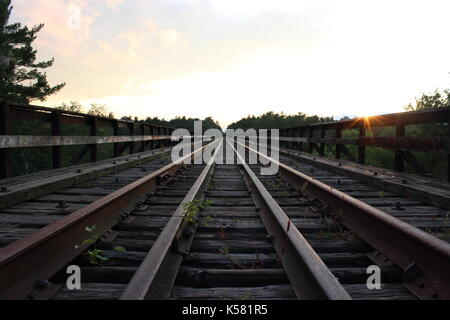 A rail road leads into a forest off in the distance. The sun peaks above a railing on the train bridge, watching - Stock Photo