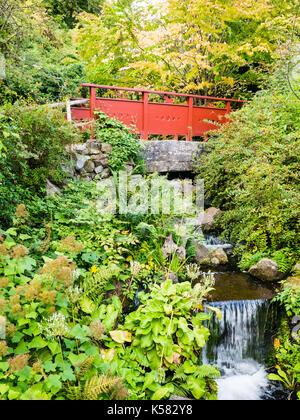 Red Bridge, Chinese Hillside, Royal Botanic Garden Edinburgh, Edinburgh, Scotland - Stock Photo