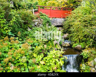 Red Bridge, Chinese Hillside, Royal Botanic Garden Edinburgh, Edinburgh, Scotland UK, GB. - Stock Photo