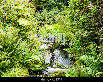 Heron, Chinese Hillside, Royal Botanic Garden Edinburgh, Edinburgh, Scotland - Stock Photo