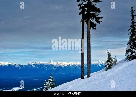 Landscape on ski hill with steep slope and snow covered mountain background - Stock Photo