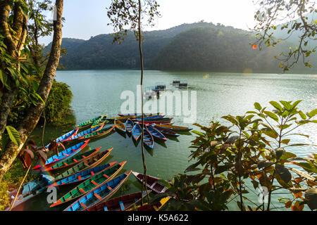 Colorful canoe boats at sunrise on Phewa Lake in Pokhara, Nepal. - Stock Photo