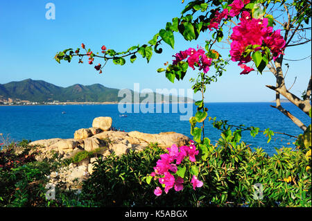 A view of trees and flowers at nha trang bay with pearl island resort in the background. - Stock Photo
