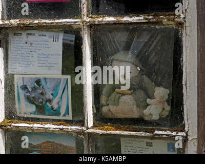The Bear in the Window on the West shore of Derwentwater Cumbria, England, UK & some of the many postcards sent - Stock Photo