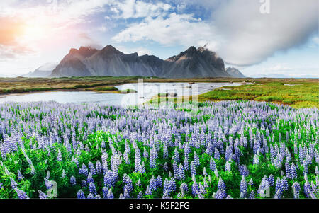 Picturesque views of the river and mountains in Iceland - Stock Photo