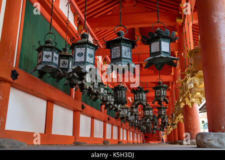 Nara - Japan, May 29, 2017: Lanterns at the Kasuga Taisha shrine - Stock Photo