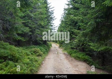 Stoney mountain road - Stock Photo