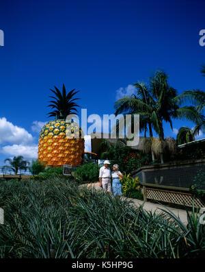 Australia. Queensland. Sunshine Coast.Tourists at the Big Pineapple. - Stock Photo