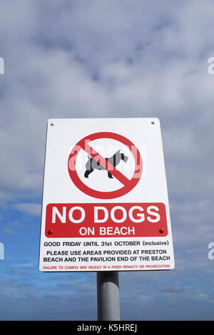 A view of a sign warning against taking dogs on a beach - Stock Photo