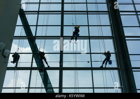 Professional window cleaners climbing up facade - Stock Photo