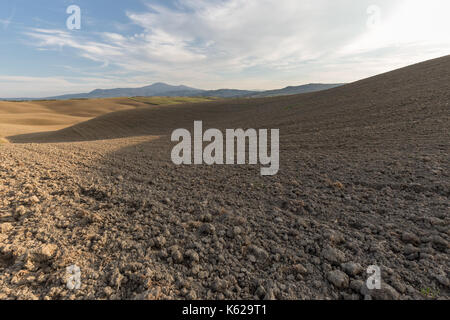 Tuscany spring landscape, with endless, uncultivated fields on curvy hills, beneath a blue sky with clouds - Stock Photo