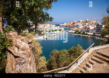 Aerial view of Agios Nikolaos, a coastal picturesque town in Eastern Crete Greece, with old olive tree in foreground, - Stock Photo