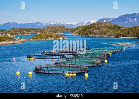Fish farm farming Salmon in Norwegian fjord on scenic north coast sea. Troms, Norway, Scandinavia, Europe - Stock Photo