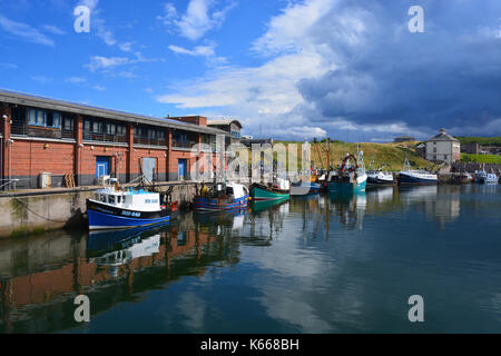 Eyemouth Harbour - Stock Photo