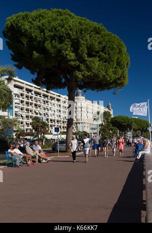 The promenade along Boulevard de la Croisette, Cannes, France