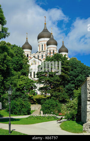 The Orthodox Alexander Nevsky Cathedral in old Tallinn on the background of blue sky with trees in the middle plan. - Stock Photo