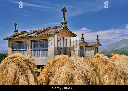 Portugal, National Park Peneda Geres: Historic corn storages 'espuigueiros'  with small haystacks - Stock Photo