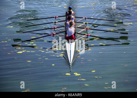 Males fours rowing team in race on the lake - Stock Photo