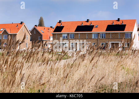 Solar panels on roof of new houses in the Netherlands - Stock Photo
