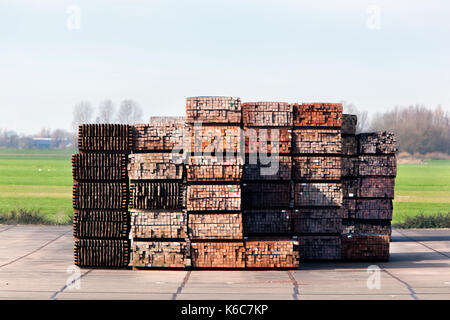 Industrial storage of piles hardwood - Stock Photo