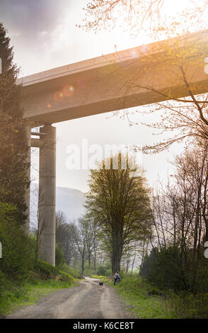 Autorailway construction valley bridge Nuttlar - Stock Photo