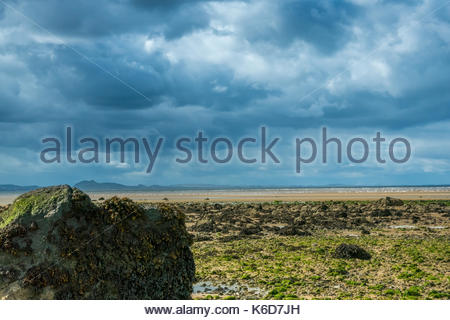 Aberlady, East Lothian, Scotland, United Kingdom. 12th Sep, 2017. Sunshine on the beach at low tide looking West - Stock Photo