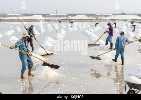 NHA TRANG, VIETNAM - 4/12/2016: Workers organize salt into piles at the Hon Khoi salt fields in Nha Trang, Vietnam. - Stock Photo