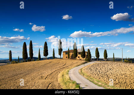 Farmhouse surrounded by Cypress Trees just outside of Pienza, Val d'Orcia in Tuscany Italy EU - Stock Photo
