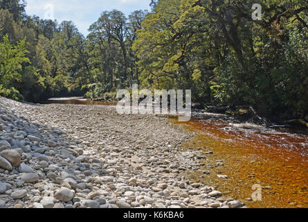 The Oparara River Near Karamea, West Coast  New Zealand. Note the amazing golden brown Tea colour of the water stained - Stock Photo