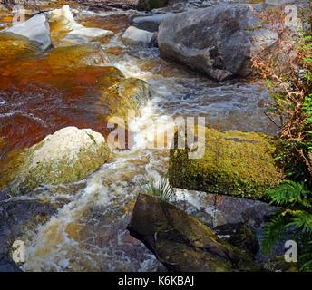 Closeup of the Oparara River near Karamea, West Coast  New Zealand. Note the amazing golden brown Tea colour of - Stock Photo