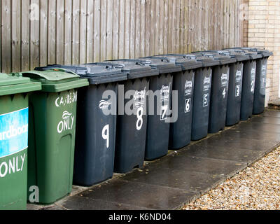 Black and green wheelie bins lined up against a fence outside a block of flats in Barnstaple, Devon, UK - Stock Photo
