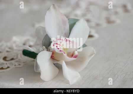 White orchid boutonniere small bouquet for buttonhole used for groom and wedding guests positioned on a white cloth, - Stock Photo