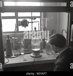 1950s, historical picture showing a young university lab researcher working on the ways different chemicals affect the physical properties of the natural fibre of jute, Leeds University, Leeds, England, UK.