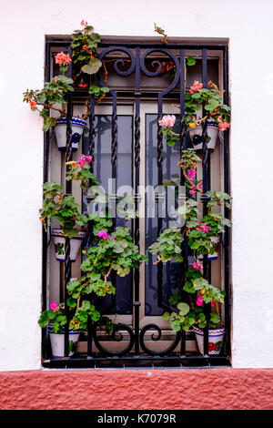windows with flowers in Sitges village, district of Barcelona, good summer escape, beach, fun and architecture, - Stock Photo