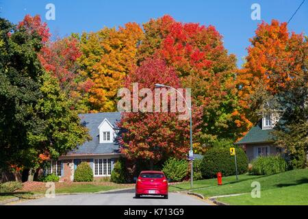 Canada, province of Quebec, the scenic Chemin du Roy, Quebec City, chic Cap Rouge district in fall foliage - Stock Photo