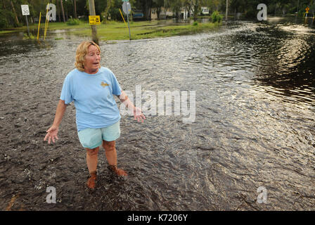 Elfers, United States. 13th Sep, 2017. September 13, 2017- Elfers, Florida, United States - Debbie Jared gestures - Stock Photo