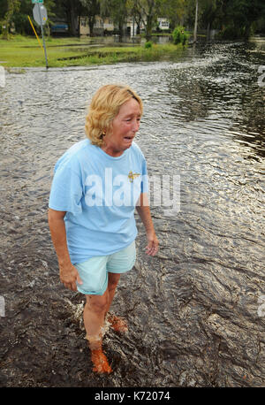 Elfers, United States. 13th Sep, 2017. September 13, 2017- Elfers, Florida, United States - Debbie Jared becomes - Stock Photo