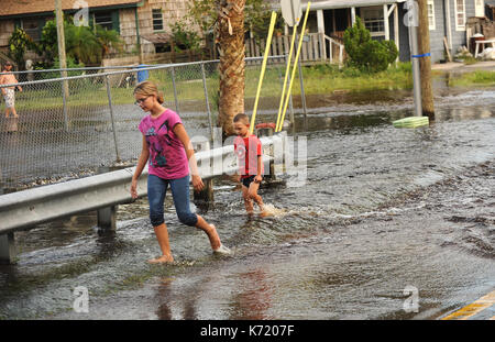 Elfers, United States. 13th Sep, 2017. September 13, 2017- Elfers, Florida, United States - Children walk in a road - Stock Photo