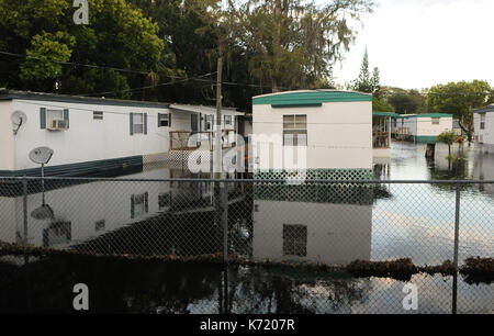 Elfers, United States. 13th Sep, 2017. September 13, 2017- Elfers, Florida, United States - A mobile home park is - Stock Photo