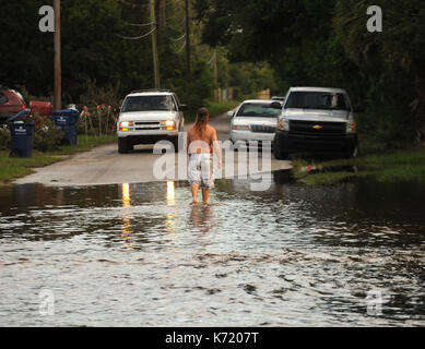 Elfers, United States. 13th Sep, 2017. September 13, 2017- Elfers, Florida, United States - A man walks in a road - Stock Photo