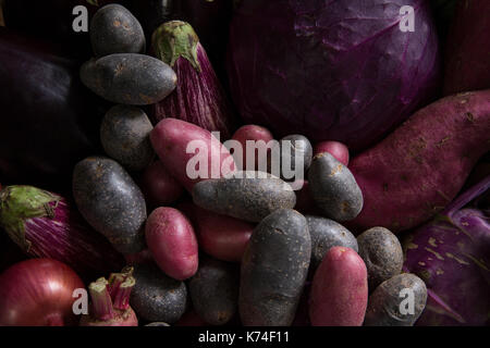 Close-up of various fresh vegetables - Stock Photo