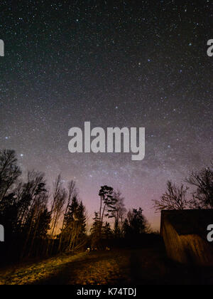 night sky with stars in the winter night with trees and milky way - Stock Photo