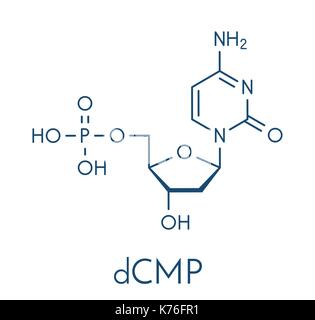 Deoxycytidine monophosphate (dCMP) nucleotide molecule. DNA building block. Skeletal formula. - Stock Photo