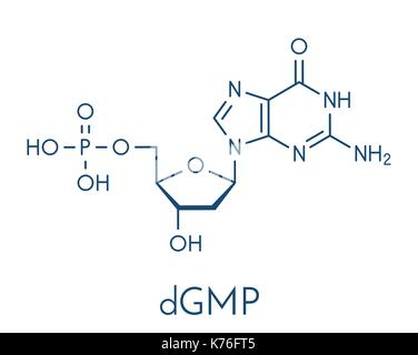 Deoxyguanosine monophosphate (dGMP) nucleotide molecule. DNA building block. Skeletal formula. - Stock Photo