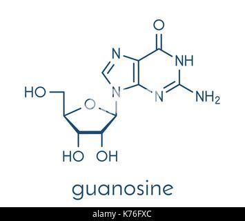 Guanosine purine nucleoside molecule. Important component of GTP, GDP, cGMP, GMP and RNA. Skeletal formula. - Stock Photo