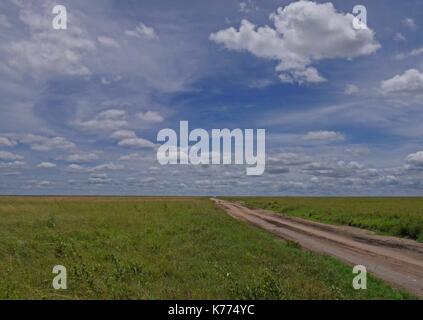 A dirt track leads into the vast open plains of the Serengeti National Park, Tanzania - Stock Photo