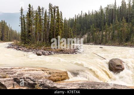 Sunwapta Falls on the Sunwapta River, Jasper National Park, Alberta, Canada - Stock Photo