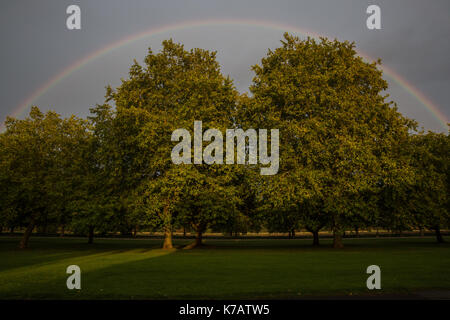Windsor, UK. 15th Sep, 2017. UK Weather. A rainbow over the Long Walk in Windsor Great Park. Credit: Mark Kerrison/Alamy - Stock Photo