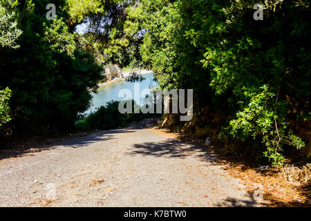 Way through silhouetted frame made of conifer canopy on seashore. - Stock Photo